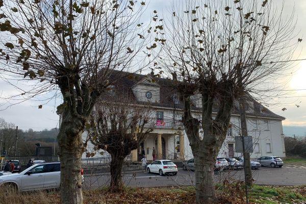 Pour permettre la réalisation d'un parking, ces arbres centenaires pour certains sont menacés d'abattage.