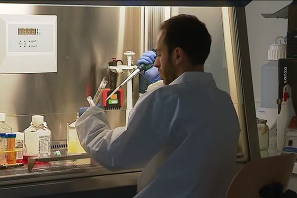 le laboratoire CHU Dijon (génétique)