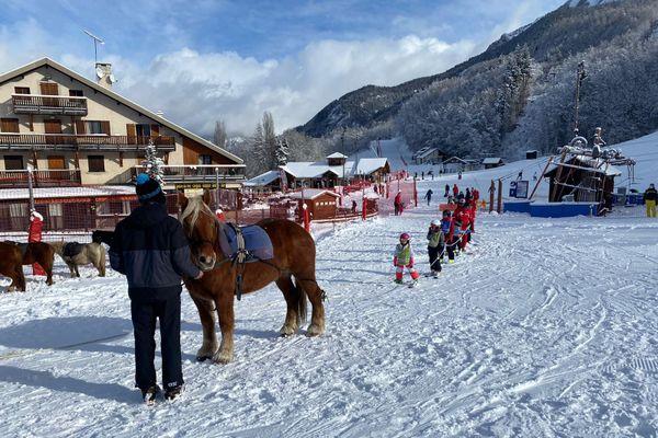 A Saint-Léger-les-Mélèzes, dans les Hautes-Alpes, les chevaux pratiquent le ski joëring et tractent les enfants en haut de pistes faciles d'accès.
