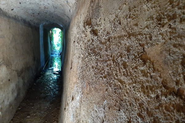 Le frère de Pierre Oliviero a trouvé par hasard ce surprenant souterrain, qui traverse le grès de Menton sur une centaine de mètres. Sans doute la plus belle des barmes encore existantes.