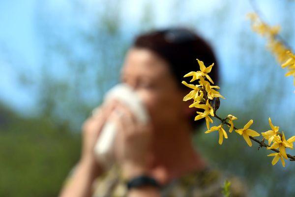 Les conditions anticycloniques sont malheureusement propices à une large diffusion des pollens aujourd'hui en France.
