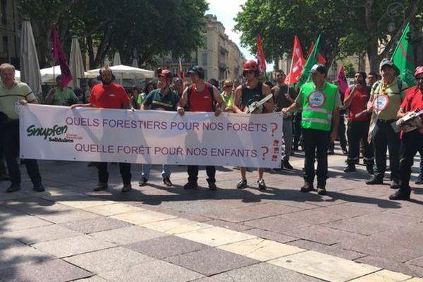 Quelques 200 agents de l'ONF. Avignon