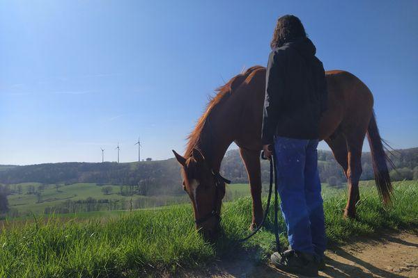 """Au CER Mustang, à Mouzon, dans les Ardennes : """"l'ado farouche murmure à l'oreille de son cheval"""", selon le crédo du centre."""