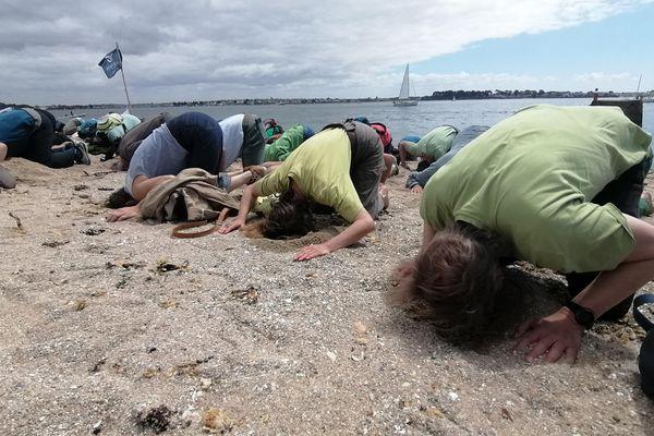 Les manifestants ont mis la tête dans le sable pour symboliser la politique de l'autruche de l'Etat en matière de lutte contre les algues vertes.