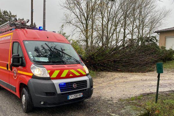 Plusieurs arbres, comme ici à Cadours (31), sont tombés sur des lignes électriques provoquant de nombreuses coupures dans plusieurs départements.