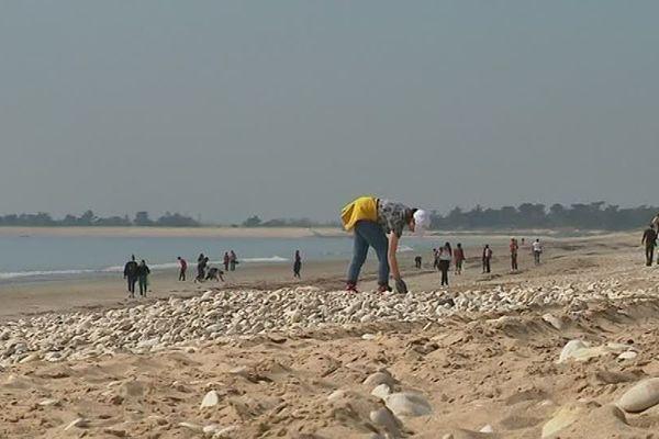 60 lycéens français, allemands et polonais sur la plage de La Couarde sur l'île de Ré pour une grande opération de nettoyage.