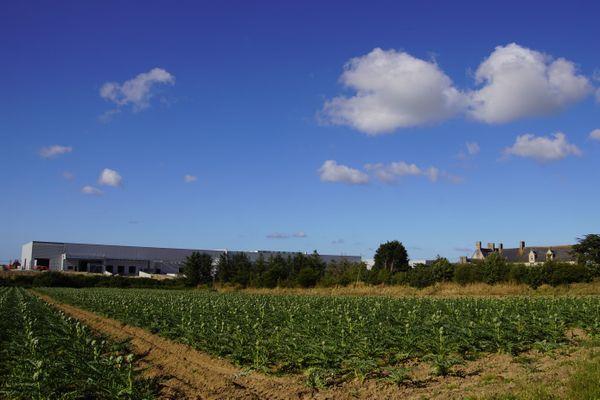 Le nouveau paysage au lieu-dit de Vilar Grenn. La plateforme, et à proximité le manoir classé de Kermorus