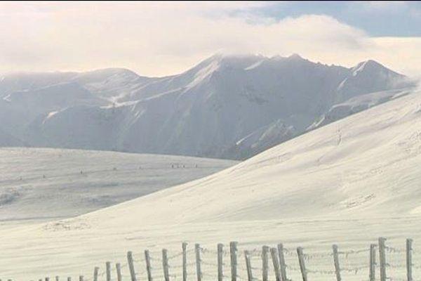 Le 17 janvier 2016, le Massif du Sancy enseveli sous la neige n'effraie pas les 1360 coureurs du onzième Trail du Sancy dans le Puy-de-Dôme.