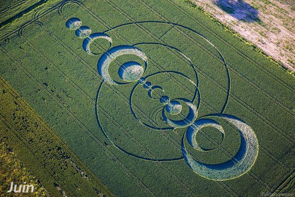 Le crop circle de Saint-Hippolyte.