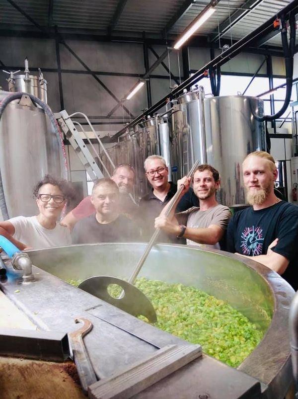 L'équipe de la brasserie Gasconha brasse avec du houblon vert.