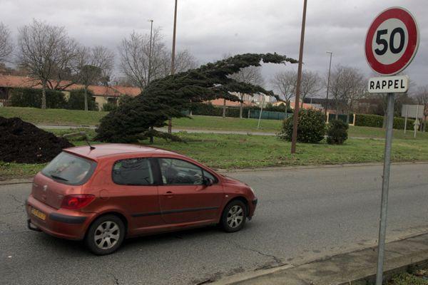 Tempête de 2009 à Toulouse