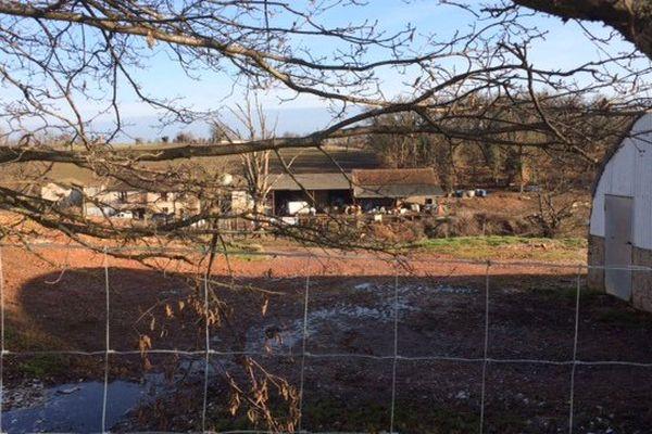 L'élevage d'Almayrac dans le Tarn touché par le virus de la grippe aviaire