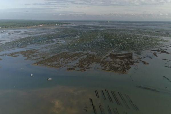 Les opérations de réhabilitation sont situées entre l'île aux oiseaux et Les Jacquets.