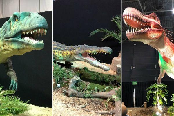 """L'exposition """"Sur les traces des dinosaures"""" est l'animation phare de l'édition 2019 de la Foire de Grenoble"""