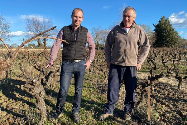 Julien et Jean-Jacques Daumas, propriétaires de vignes à Marsillargues depuis plusieurs générations - février 2021