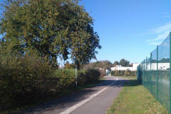 La pylône devait être installé à une dizaine de mètres de ce chêne planté devant le collège Tabarly à La Baule