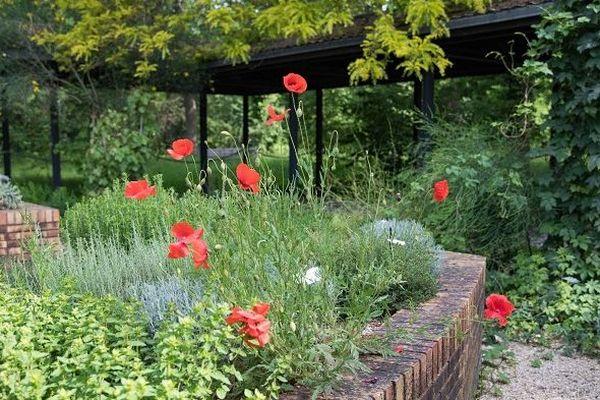 La végétation a prospéré dans l'enceinte du parc Floral