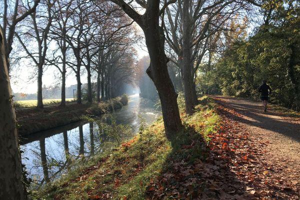 Un matin d'automne sur les berges du Canal du Midi