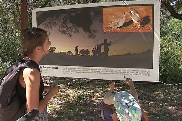 Montpellier - la biologie évolutive expliquée dans une exposition au zoo de Lunaret en 25 affiches - août 2018.