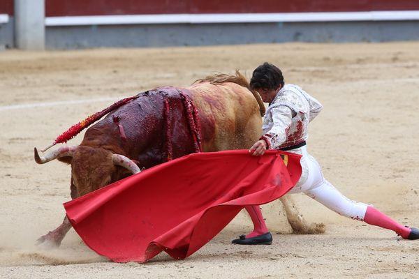 Madrid, 8 juin 2017. Genou ployé, corps de l'homme et de la bête pareillement étirés. Del Álamo dans ses œuvres.