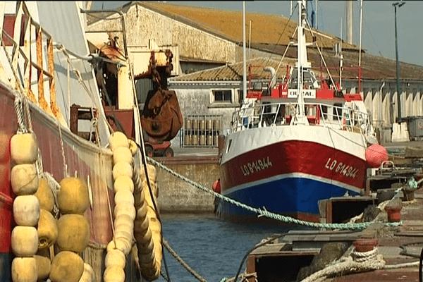 Bateaux de pêche à Kéroman