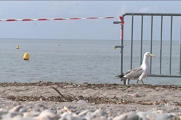 La baignade interdite, cet été sur une plage de Saint-Laurent-du-Var (Archive)