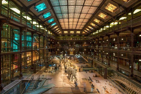 Le Muséum National d'Histoire Naturelle, un des complices de Paris Face Cachée 2020