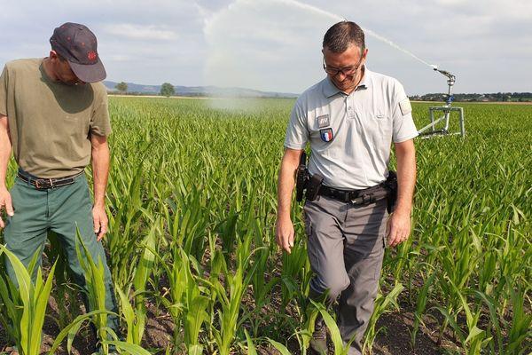 A Ennezat, dans le Puy-de-Dôme, les services de l'Etat organisaient mardi 9 juillet un contrôle auprès des agriculteurs et des particuliers.