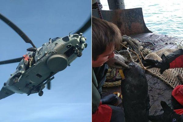 Les plongeurs démineurs ont été hélitreuillés à bord d'une drague pour mettre l'obus en sécurité.