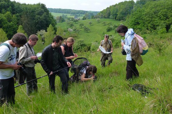 Picardie Nature organise également des journées d'étude, ici consacrée aux papillons à Quincampoix-Fleuzy