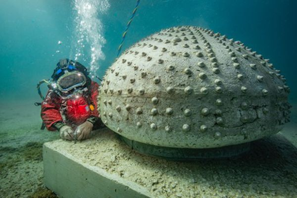 """""""Oursin Test"""" de Daniel Zanca, sa coquille creuse et ouverte et ses aspérités sont prévues pour accueillir la faune sous-marine"""