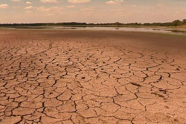 L'étang des Landes à Lussat en Creuse, été 2020