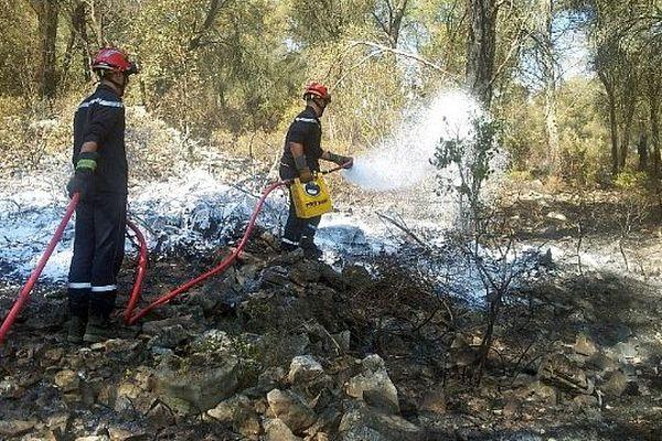 Entre Montbazin et Gigean (Hérault) - les pompiers surveillent et sécurisent la zone de feu, 24 heures après l'incendie - 1er août 2014.