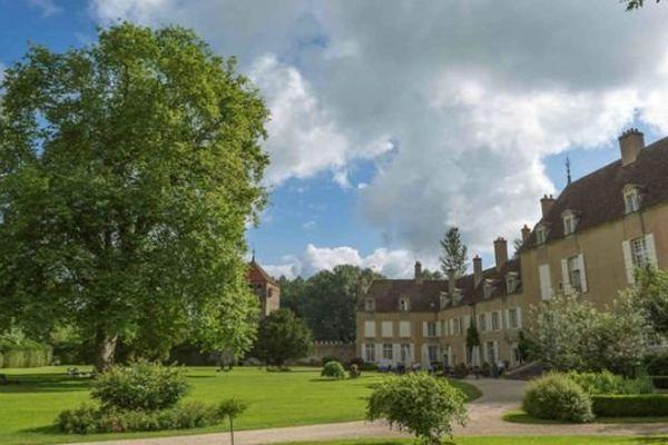 """Un platane spectaculaire - vieux de 400 ans et haut de 42 mètres - situé sur le domaine du château-hôtel  de Vault de Lugny, a reçu le label """"Arbre remarquable de France"""""""