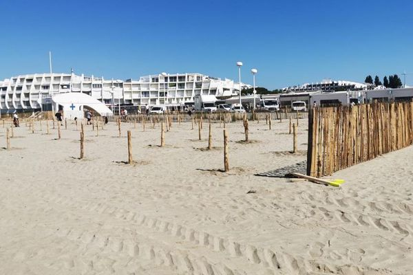 C'est sur la plage du Couchant qu'est installée la plage partagée de la Grande-Motte.