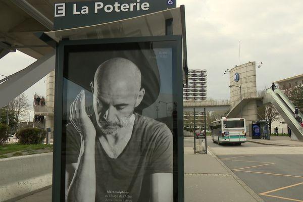 Les photos seront affichées jusqu'au 4 avril dans les rues de Rennes.