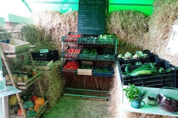 """Malgré le récent sinistre, la vente directe de légumes reprendra dès mercredi prochain au """"Jardin de Guillemette"""""""