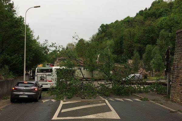 L'arbre s'est couché sur la voirie dans toucher de véhicule. Il sera tronçonné dans l'heure qui vient.