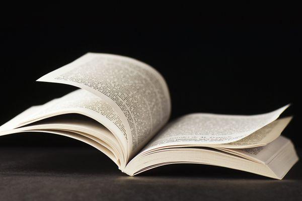 De 38 à 300.000 exemplaires, le classement des tops et flops des ventes de livres politiques des élus franciliens.