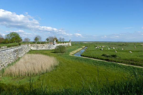 """Le marais du Brouage, en Charente-Maritime, est composé de 11.000 hectares de zones humides. Les communautés de Rochefort-Océan et Bassin de Marennes s'associent pour le faire labelliser """"Grand site de France""""."""