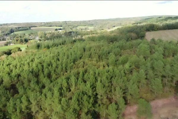 Vue aérienne de la forêt de Paimpont.