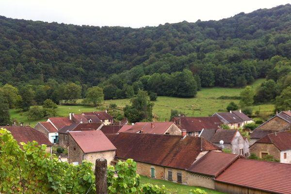 La commune de Rotalier, dans le Jura, et son vignoble.