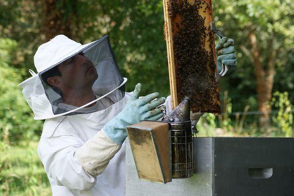 Thierry Porteau s'est pris de passion pour l'apiculture.