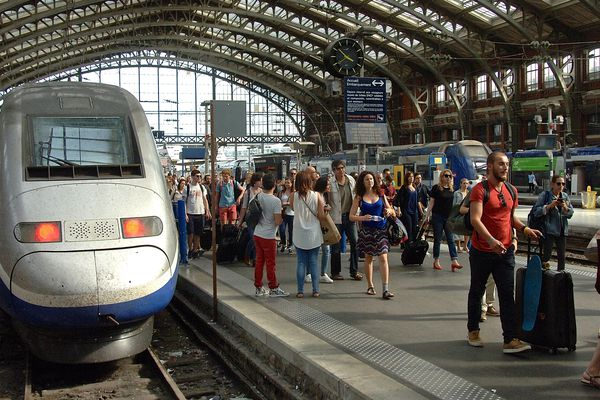La Wi-fi sera disponible sur la ligne Lille - Paris.