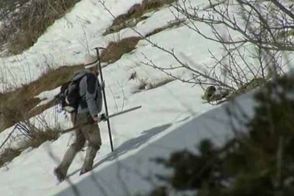 Chasser le chamois dans les Alpes du Sud pour le réintroduire en Lozère, une vrai défi