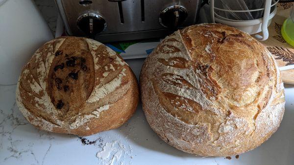 Jean Philippe Bagel se prend de passion pour la boulangerie.