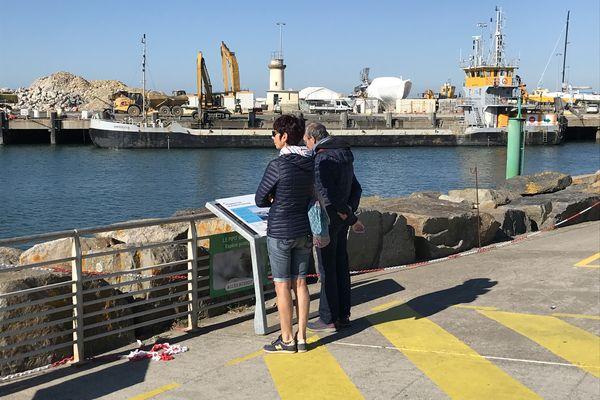 Le chantier d'agrandissement du port de La Turballe en Loire-Atlantique est destiné à l'accueil des navires de maintenance du parc éolien du Croisic