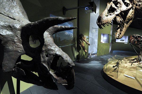 Le parc dédié à la paléontologie est ouvert du 10 février au 4 novembre 2018