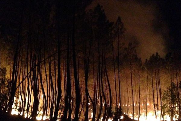 Un important incendie a déjà ravagé 45 hectares dans les Cévennes gardoises - 23 août 2017