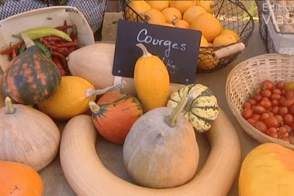 """Fruits et légumes sur un marché de Balagne, une production """"à l'unité""""... dans le cadre des circuits courts de commercialisation des produits agricoles"""